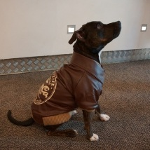 Brown Art Leather Jacket