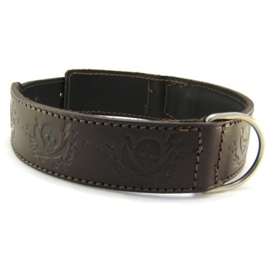 Leather collar w skull Brown