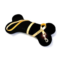 GLOSSY LEASH GOLD