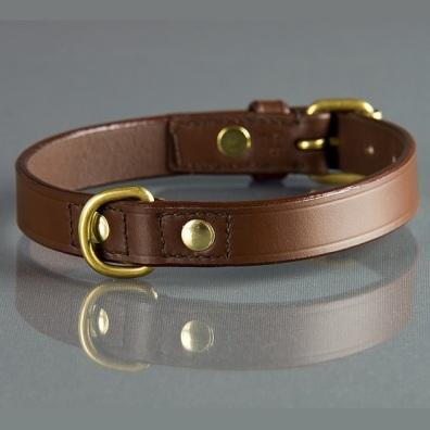 Brown Collar Basic