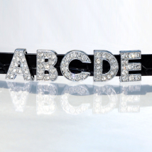 Rhinestone Letters for Matching Collars & Harness