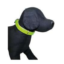 GLOSSY COLLAR IN GREEN - ADJUSTABLE