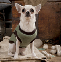 Fleece shirt - Mint green