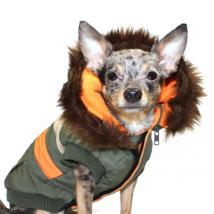 Ski Coat Olive w Stripes - Big Dog