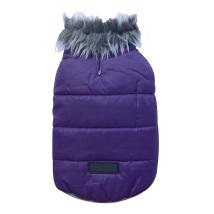 PUG - Purple jacket with fur