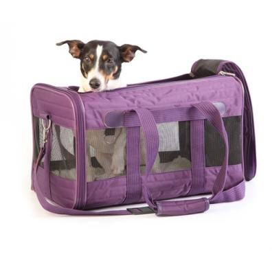 DELUXE Travel Bag  - Purple