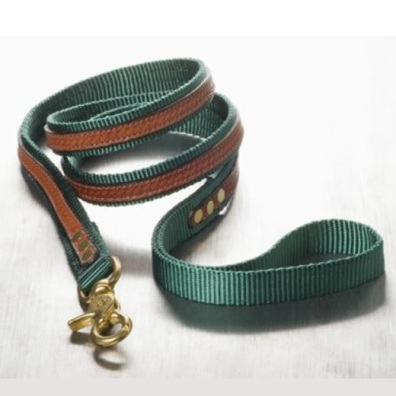 Leather and nylon Leash Green