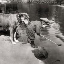 Helping Hound