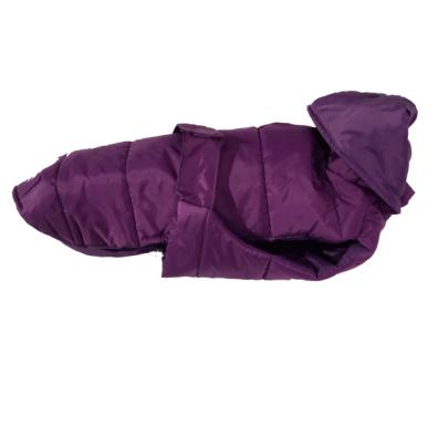 Mont Luc - Purple