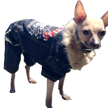 Denim 4-legged Suit w Skulland Fur inside
