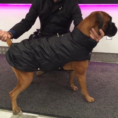 Modern Basic Rain and Fleece Coat - Black