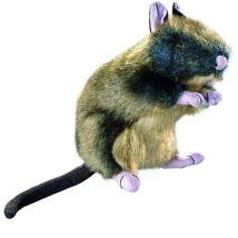 Dog Toy Wildlife Rat S Plysch