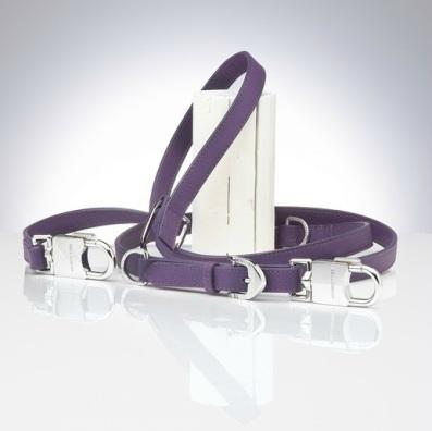 Purple Persephone Leash