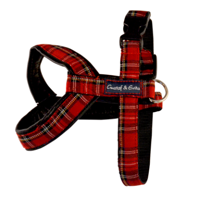 Leather Harness Scottish Red