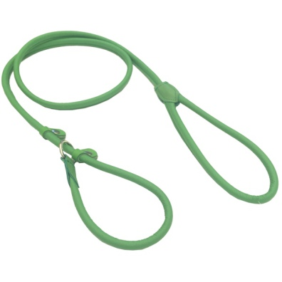 Retriever Leather Leash - Green