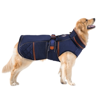 Royal Dog Coat - Blue