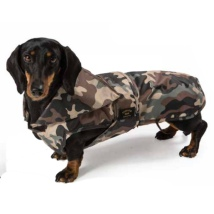 Light Dachshund Trench Coat