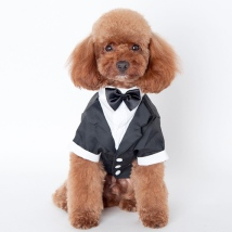 Tuxedo w Black Bow -