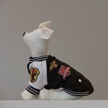 Dog racing coat Black